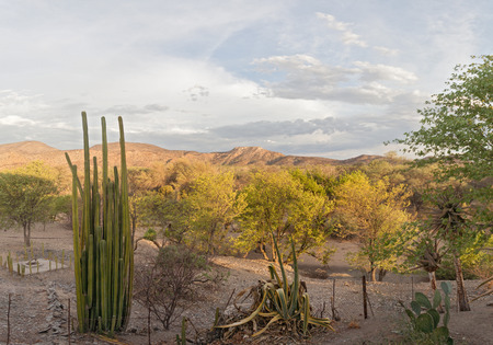 riverbed: evening on a farm on the banks of the dry Ugab River near the Vingerklip, Namibia Stock Photo