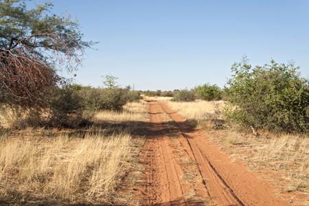 huellas neumáticos: camino de tierra con huellas de neumáticos en Namibia