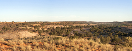 conservation grazing: dry Auob river in Namibia near the border of South Africa