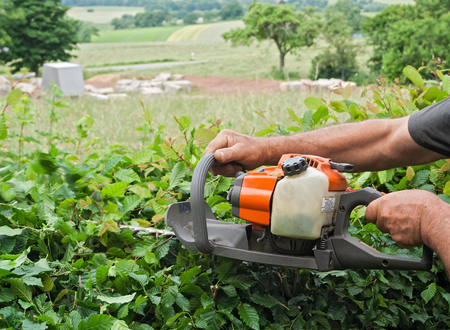 trimmer: Man cutting a hedge with a hedge trimmer gasoline Stock Photo