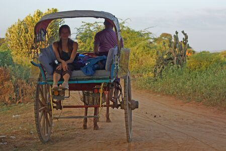 Young woman traveller sitting in old horse cart on earth road in early morning. Man riding a cart. Green landscape