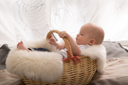 son in law: newborn baby in the basket. Stock Photo