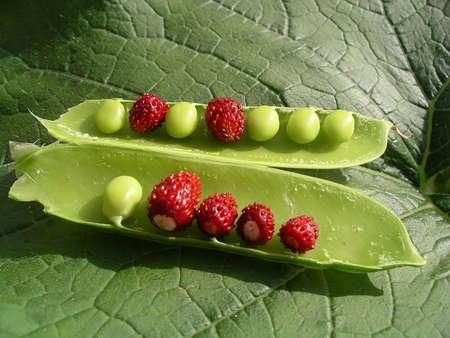 Strawberry and pea pod