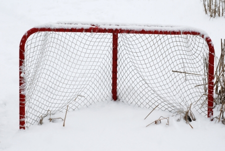 Rode Hockey Net