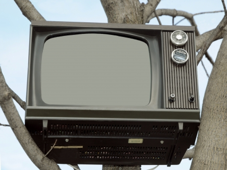 Old TV set in a tree Banco de Imagens