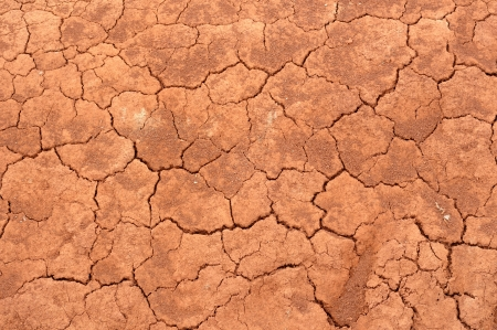 Cracked red soil  - pattern   background
