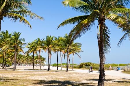 South Beach Miami 版權商用圖片