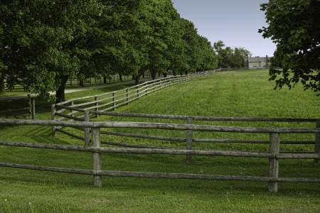Wooden rail fence and a tree-line fence Stock Photo