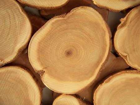 Jaarlijkse cirkels van hout. Close-up. Achtergrond