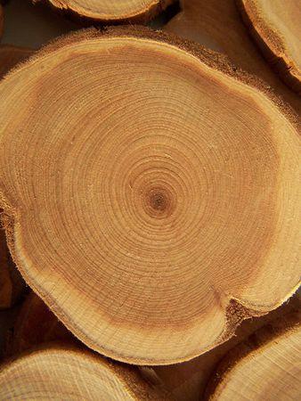 Dwarsdoorsnede van de jeneverbes boom. Close-up.
