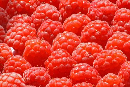 Close up of the fresh ripe raspberry for the background. Stock Photo