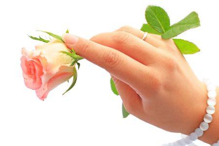 selebration: Close up of the female hand holding rose. Wedding.