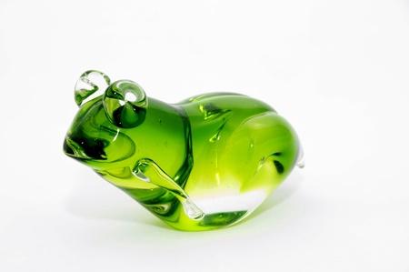 anuran: large glass frog