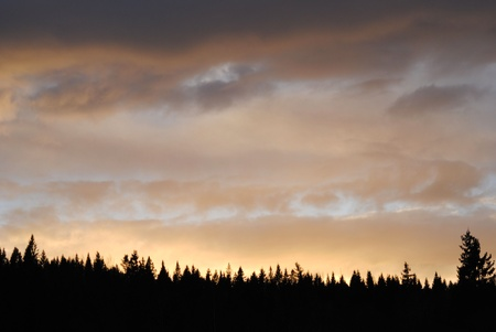 sunset over the forest on an autumn evening photo