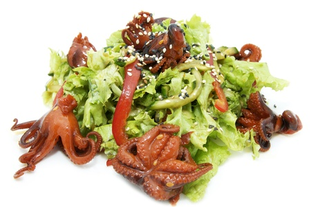 salad of octopus and cabbage leaves on a white background photo