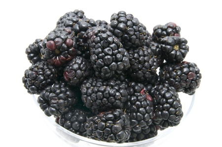 blackberries on a white background in the restaurant photo