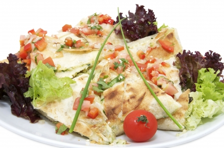 Turkish pita bread sliced pieces on a plate with greens photo