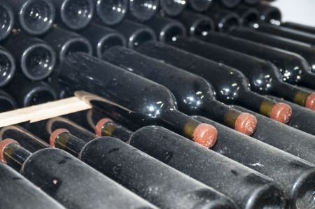 wine bottles stored in the old wine cellar photo