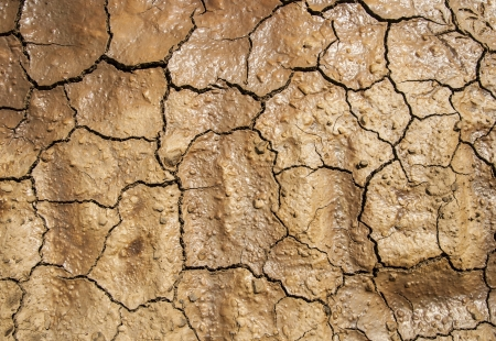 texture of cracked earth photo