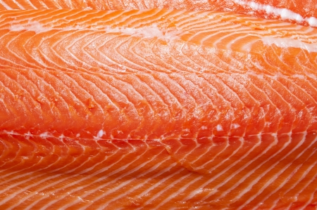 Fresh salmon fillet fish meat photo