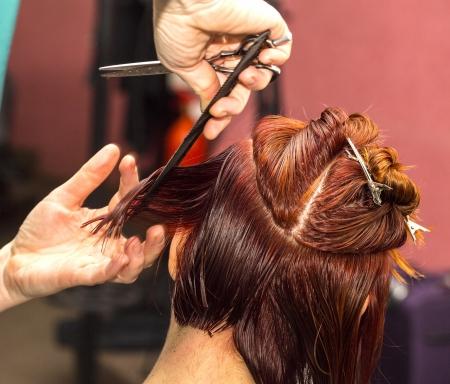 barber makes a hair salon Stockfoto
