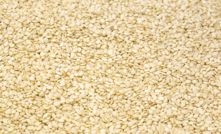 background of sesame seeds photo