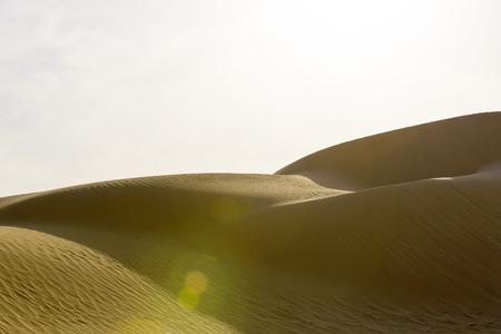 sahara: sahara desert