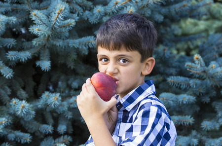 poquito: niño come un melocotón rojo jugosa madura