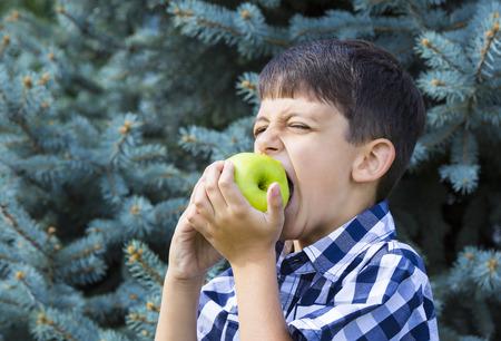 poquito: niño comiendo gran manzana verde jugosa Foto de archivo