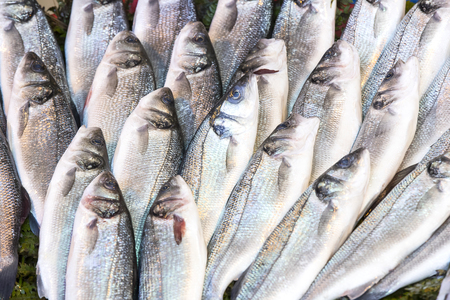 forage fish: Background of sea fish close-up on the market in the port Stock Photo