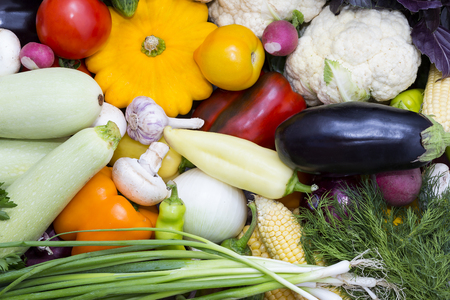 Fresh vegetables tomatoes cucumber squash and greens background close-up Stock Photo