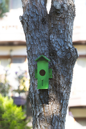 A birdhouse on a tree in a summer park