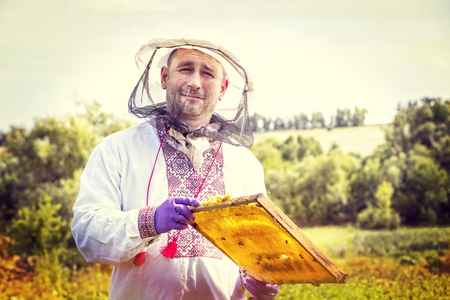A man works in an apiary collecting bee honey Stock Photo