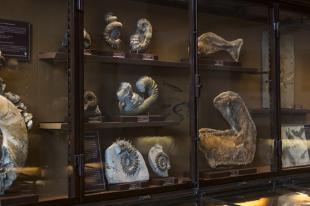 23 AUGUST 2017, VIENNA, AUSTRIA: Exhibits and expositions in the Museum of Natural History, Vienna. Editorial
