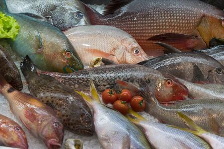 新鮮な魚介類のカニの背景 写真素材