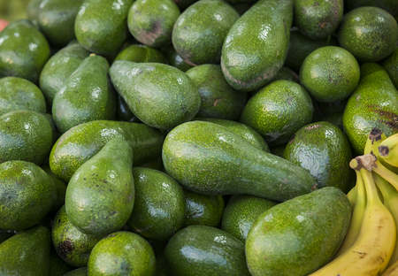 Background from environmentally friendly avocado without GMOs on the market in Tel Aviv in Israel.