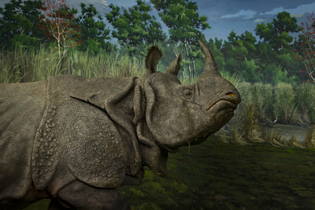 7 JUNE 2018, MILAN, ITALY: Museum of Natural History in Milan represents the animal world of planet Earth.