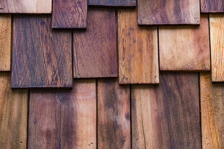 Texture of the wood is photographed close-up 免版税图像