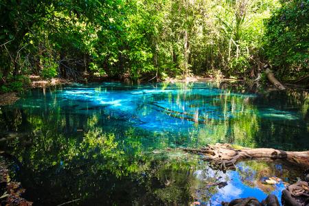 Emerald blue natural Pool. Krabi province, Thailand