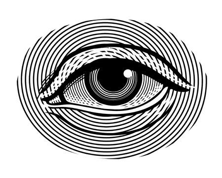 eyes closeup: illustration of human eye in vintage engraved style Illustration