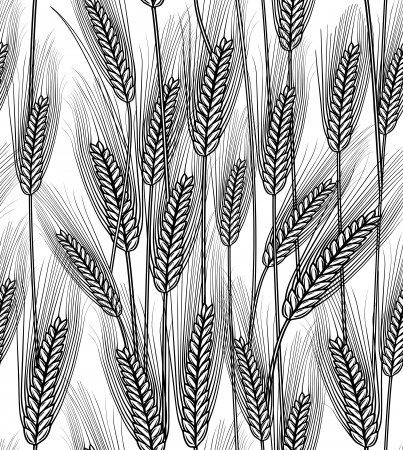 Vector illustration of seamless wheat ears background Çizim
