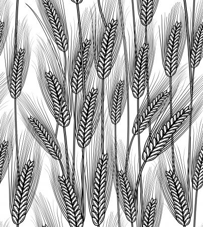 Vector illustration of seamless wheat ears background Vettoriali