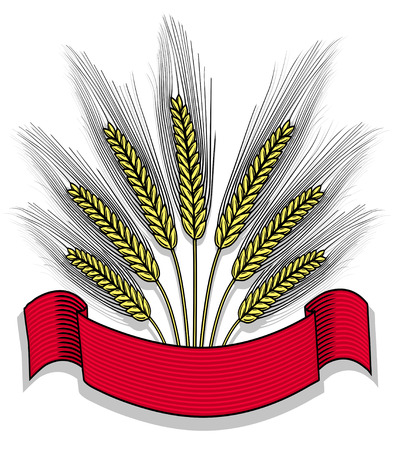 Bunch of wheat with ribbon