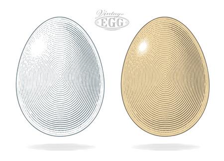 Egg in vintage engraved style. Vector illustration, isolated, grouped, transparent background Illustration