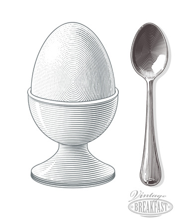 teaspoon: Vector illustration of boiled egg in eggcup with transparent background on Teaspoon
