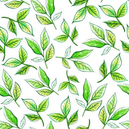 수채화 가지와 녹색 나뭇잎.