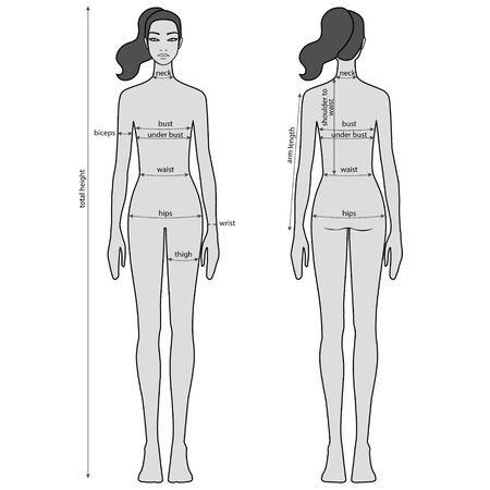 Woman body measurement chart. Female figure: front and back views. Vector. Illustration