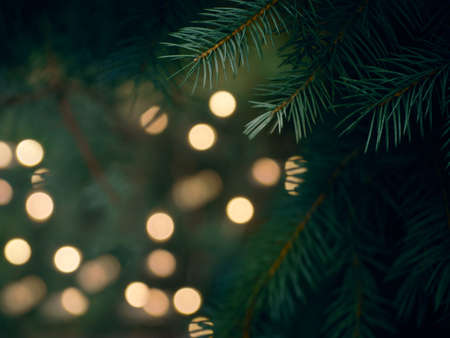 Green Christmas tree branch and yellow lights garlands blurred in bokeh