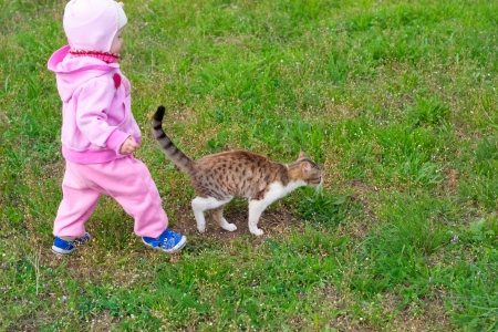 little girl in a pink dress is walking a kitten photo