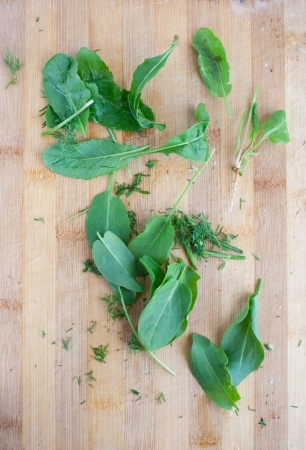 green leafs sorre, spinach on the board Stock Photo - 20106361